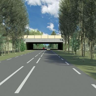 Ecoducten-Noord-Brabant-1