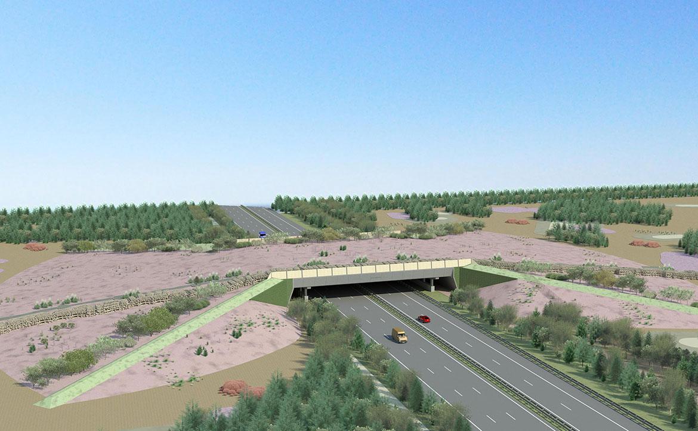 Ecoducten-Noord-Brabant-3
